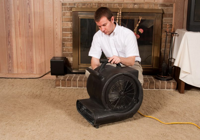 A carpet cleaning technician places a fan to dry out the carpet after steam cleaning.